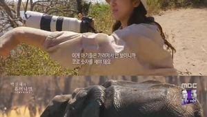 이제 동물원 못가..휴머니멀 박신혜, 아프리카 다녀와서 바뀐 생각 [종합]
